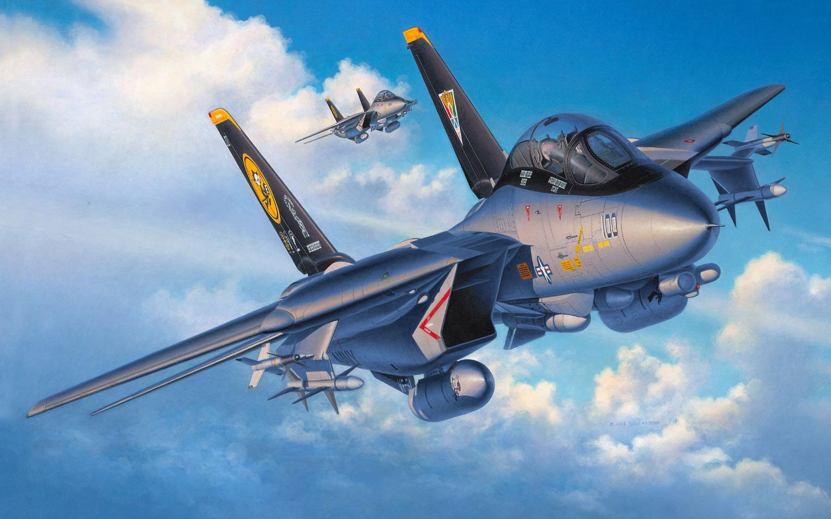 рисунок F-14D Super Tomcat Last Flight
