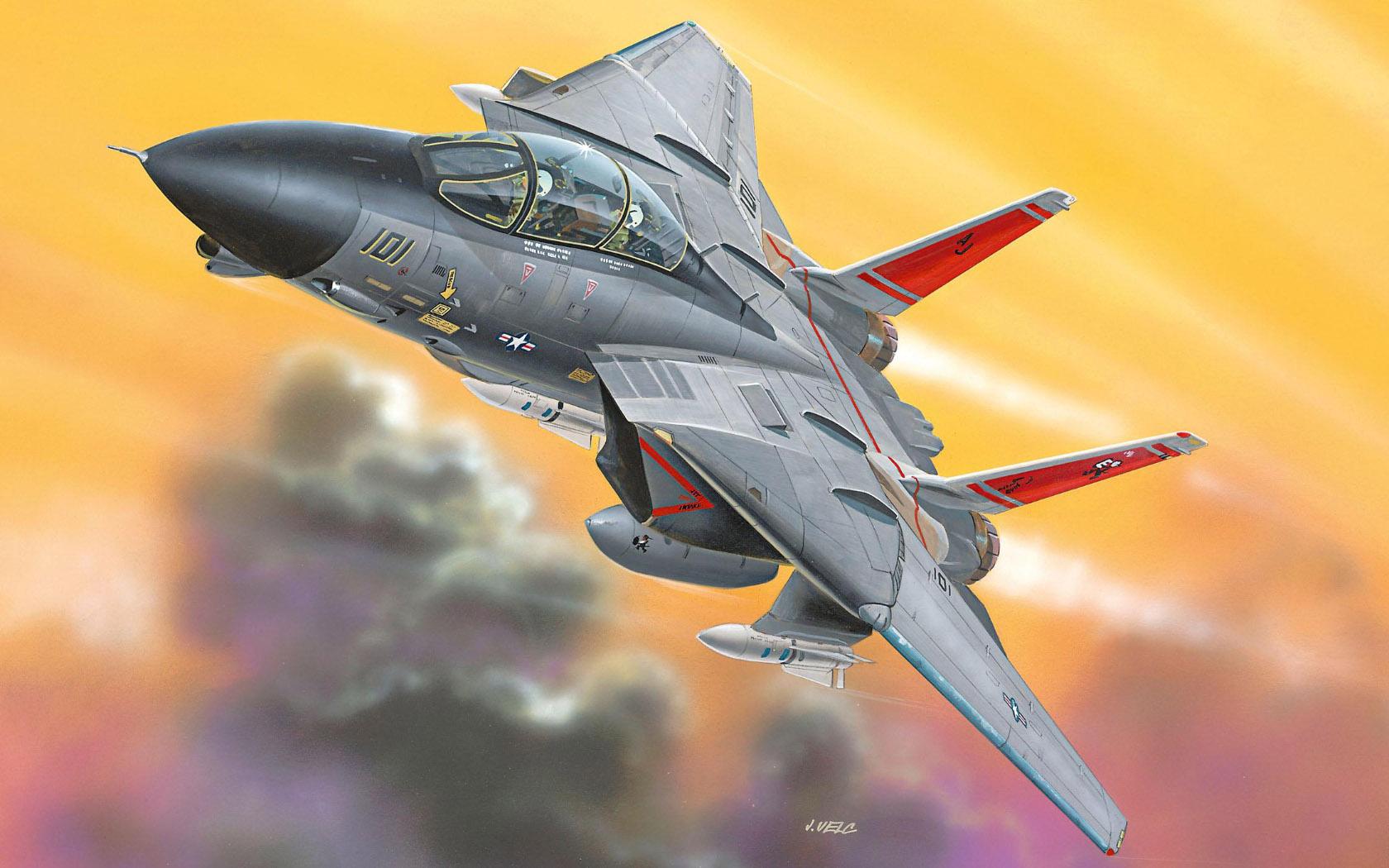 рисунок F-14D Tomcat