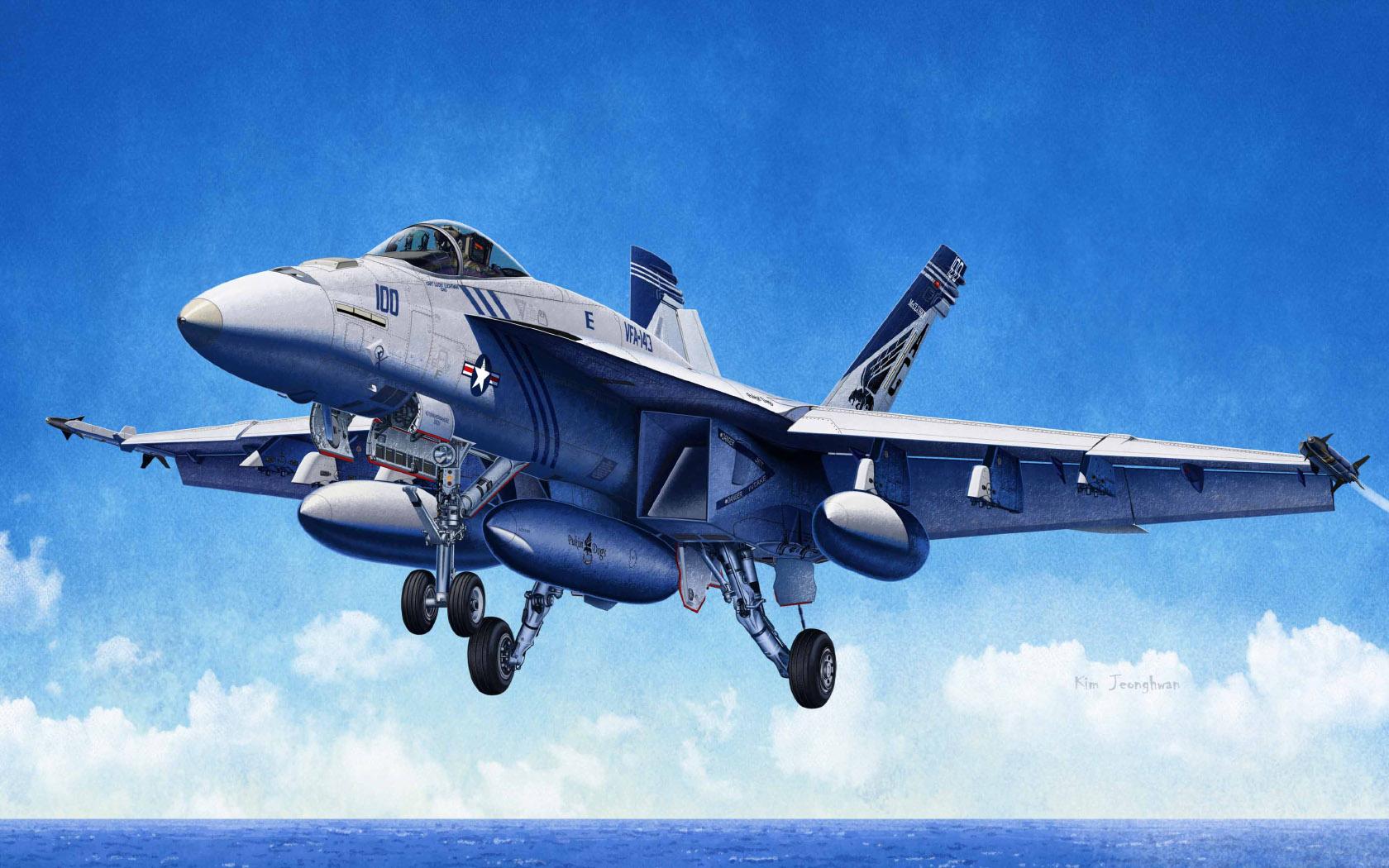 "рисунок USN F/A-18E VFA-143 ""Pukin Dogs"""