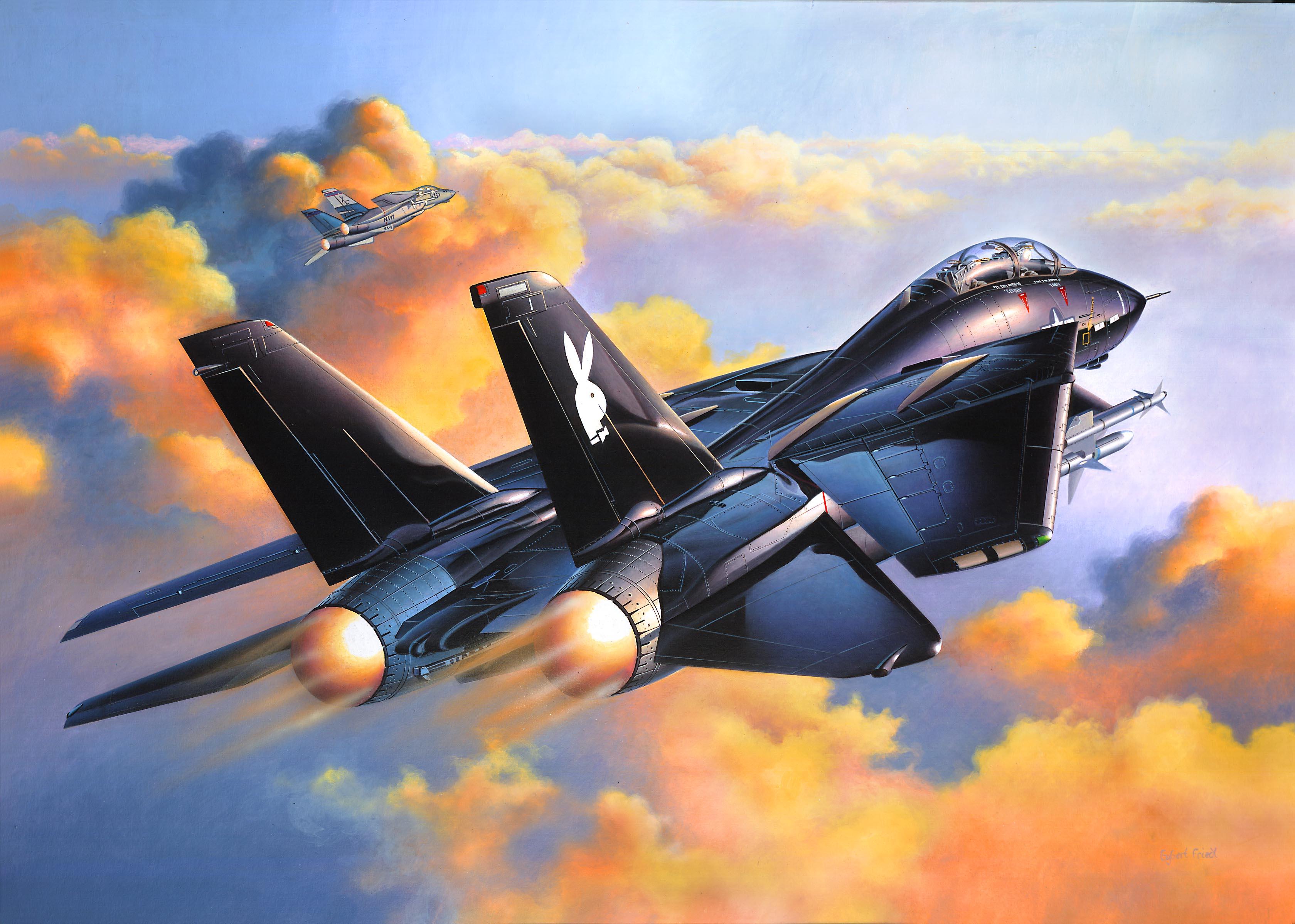 рисунок F-14A Black Tomcat