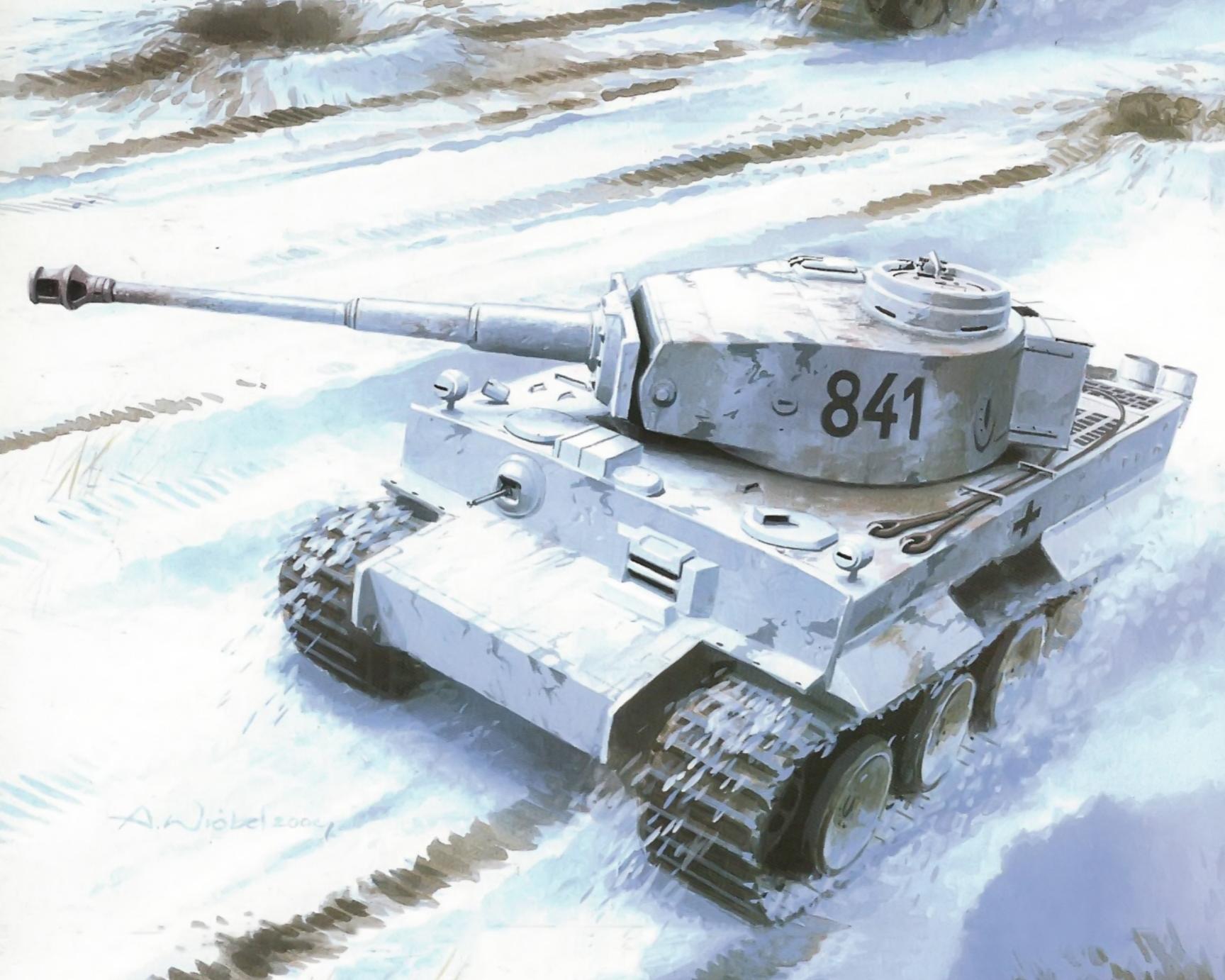 рисунок тигры в снегу